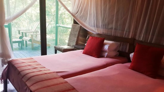 Kosi Forest Lodge: Photo by Characterstay
