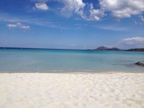 Residence Riva Azzurra: Strand in der Nähe