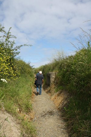 Batterie de Maisy : Walking through the trenches
