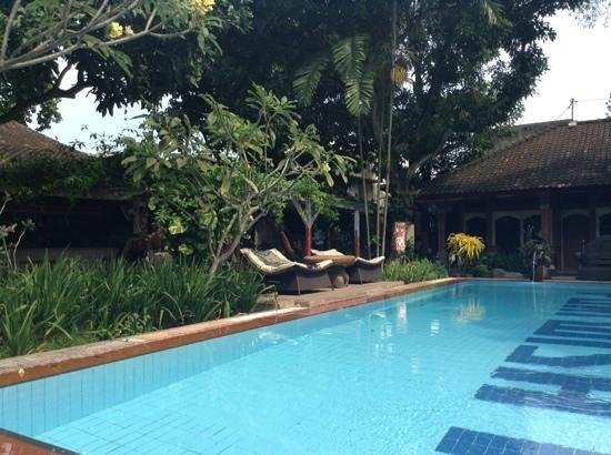 Puri Wisata Bungalows: swimming pool