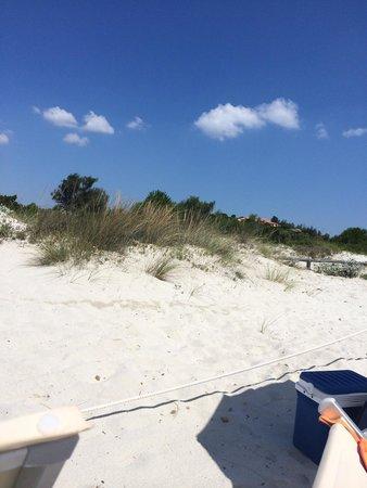 Le dune di cala brandinchi