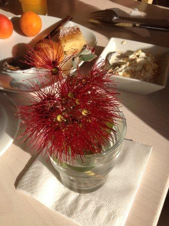 Castello Antico Beach Hotel: Blumen werden begutachtet