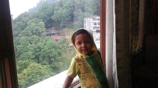 Hotel Vishnu Palace: view from room