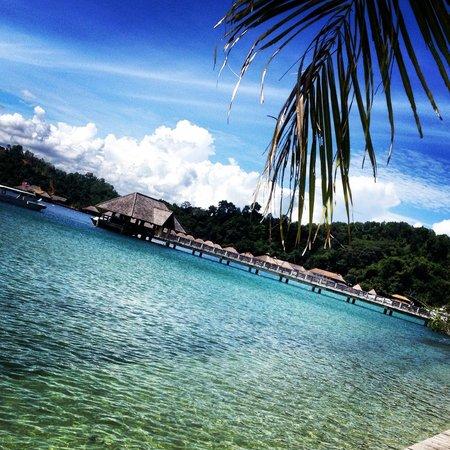 Gaya Island Resort : View from the pool