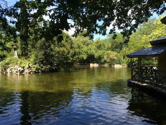Parque de El Capricho: Estanque