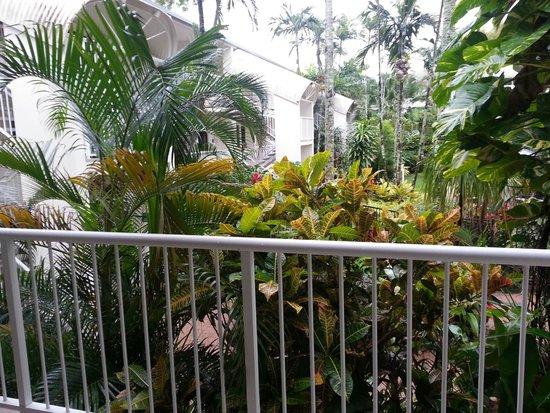 Melaleuca Resort Palm Cove