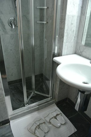 Hotel Arcadia: バスルーム(シャワーのみ)