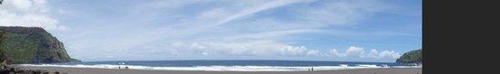Waipio Rim: Beach