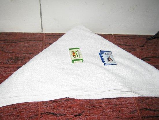 Double Tree Villa: towel and soap