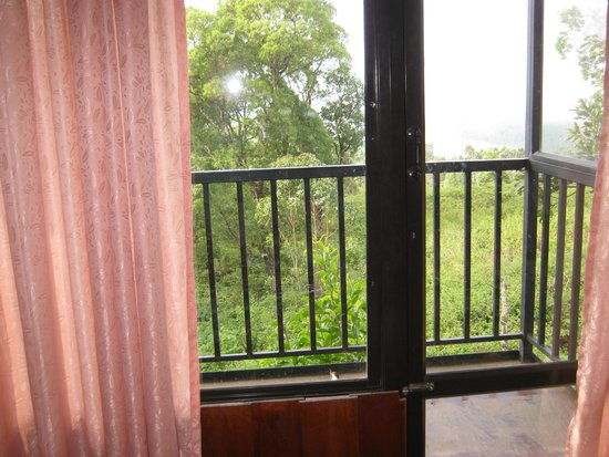 Double Tree Villa: outside view from tree house