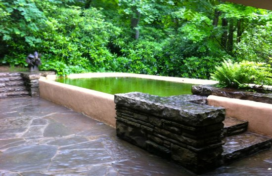 Fallingwater: The swimming pool