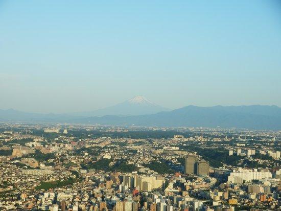 Yokohama Royal Park Hotel: 街側客室から