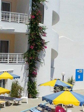 Cleopatra Hotels Kris Mari : Hotelfasade auf de Poolseite