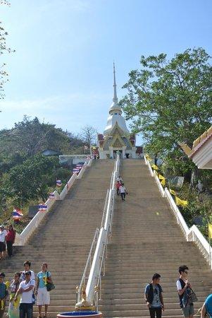 Chopsticks Hill (Khao Takiab): колония обезьян