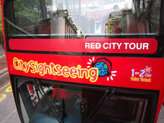 City Sightseeing Cape Town: Infront of Red bus