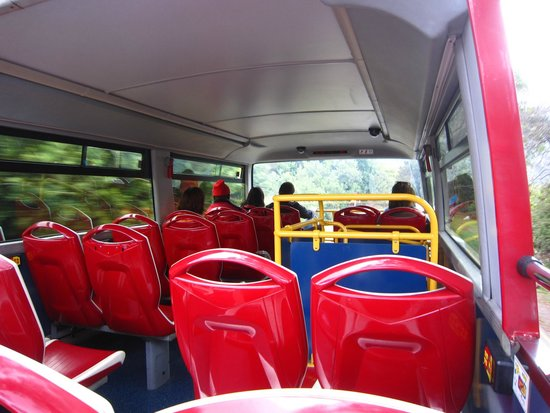 City Sightseeing Cape Town: Bus inside
