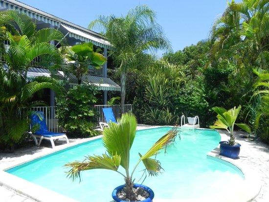 Residence Bleu Marine : Piscine