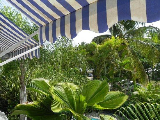 Residence Bleu Marine : Vue de la terrasse