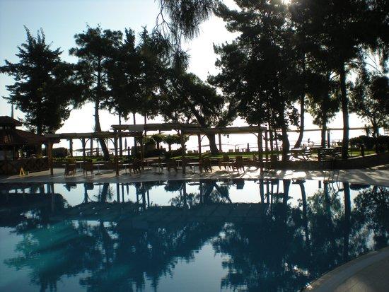 SENTIDO Palmet Resort: Fantastiskt läge direkt vid stranden