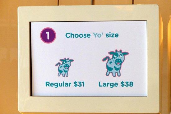 Yo Mama Frozen Yoghurt: Choose your size