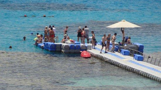 SENTIDO Reef Oasis Senses Resort: Пантон