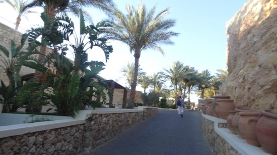 SENTIDO Reef Oasis Senses Resort: Территория