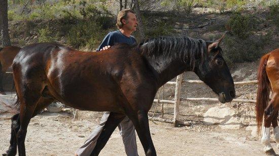 Ibiza Horse Valley: Хозяин фермы Девид