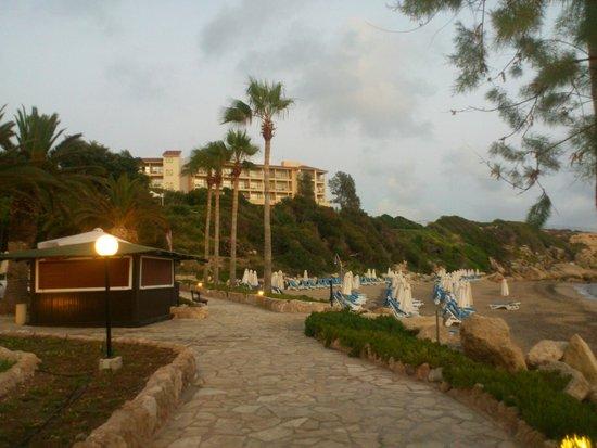SENTIDO Thalassa Coral Bay: Пляж отеля Coral beach и вид на корпус Thalassa
