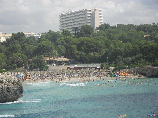 Club Hotel Tropicana Mallorca: Praia do Hotel