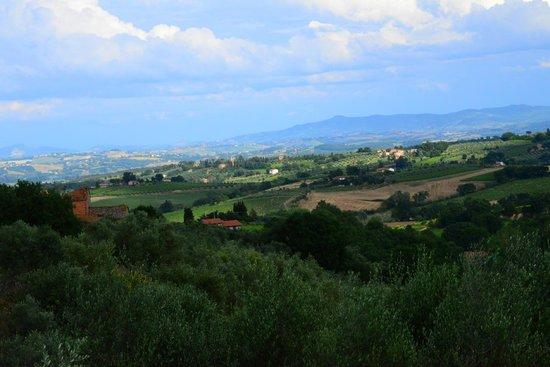 Agriturismo le Caggiole: Tuscan countryside