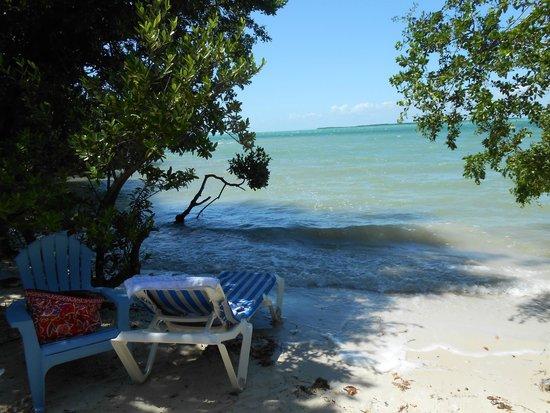 Hilton Key Largo Resort: my favorite spot