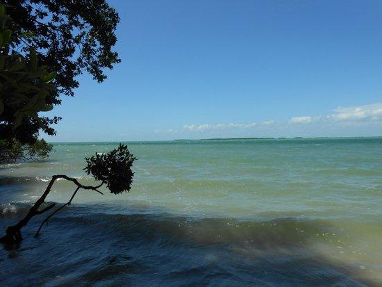 Hilton Key Largo Resort: Views