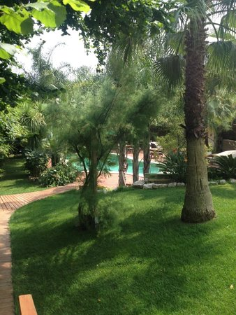 Cannes Villa St Barth: Grounds and pool