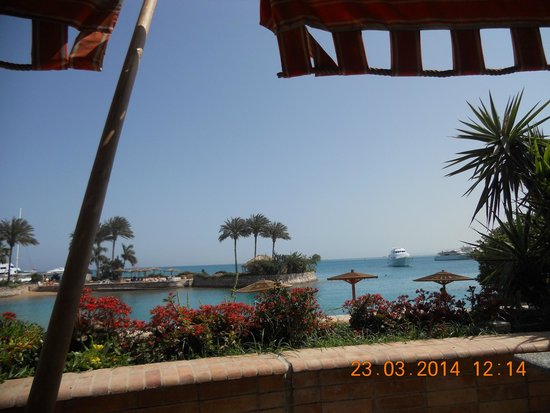 Hurghada Marriott Beach Resort : Luch with this great view