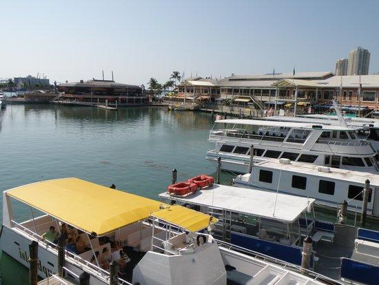Bayside Marketplace : Marina