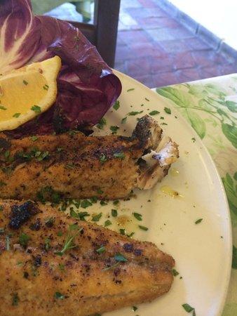 Ai Vecchietti di Minchiapititto: Peixe desastre