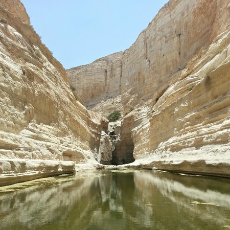 Avdat National Park: The pool and the fall from below