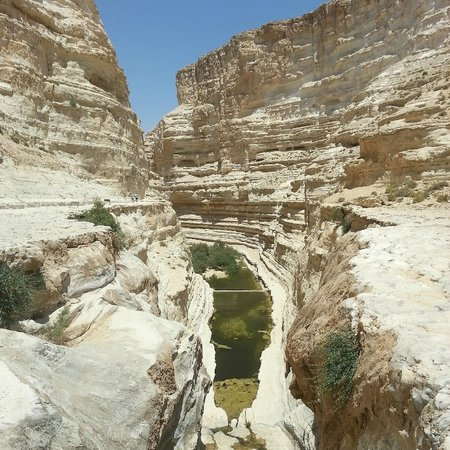 Avdat National Park: The view from the top of the fall