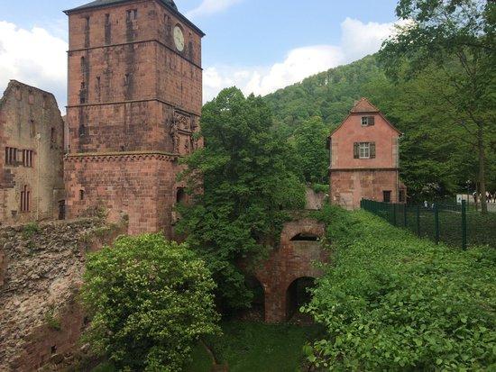 Schloss Heidelberg: Замок