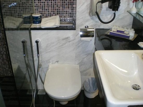 The Residence At Singapore Recreation Club: 311 Toilet