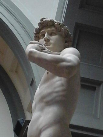 Galleria dell'Accademia : David di Michelangelo