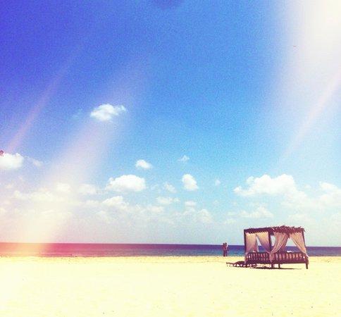 Jaz Crystal Resort: Spiaggia