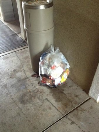 Extended Stay America - Knoxville - Cedar Bluff: trash there for at least 12 hours