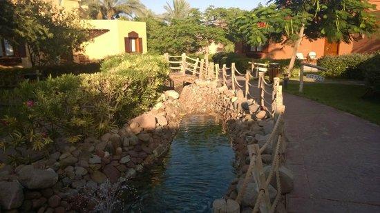 Nubian Island Hotel: Hotels beautifully kept grounds