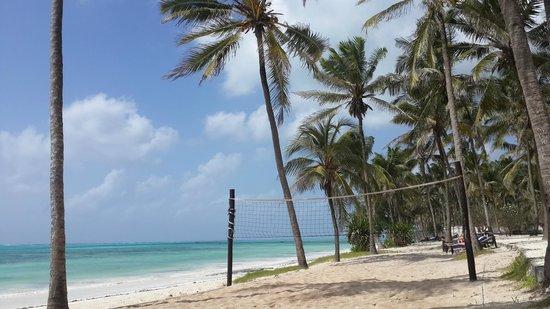 Karafuu Beach Resort and Spa : Beach at Karafuu