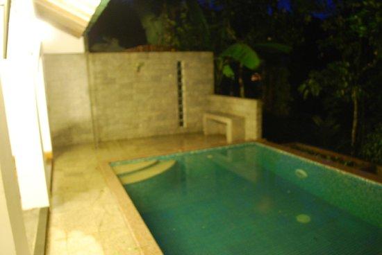 Aanavilasam Luxury Plantation House : pool villa