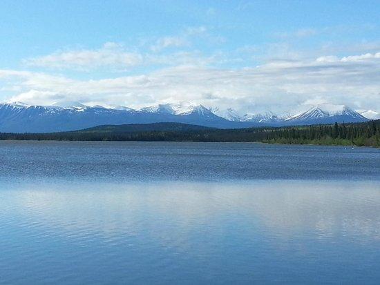 Willow Lake B&B : Willow Lake