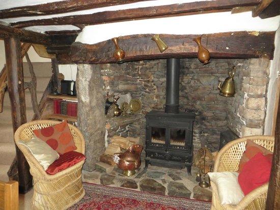 Hay Meadow Farm: le petit salon avec cheminée