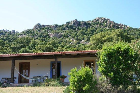 Farmhouse Stazzo  La Cerra: Gastenverblijf