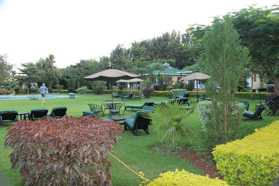 Country Lodge : Grounds - great place to relax after a day on game drive